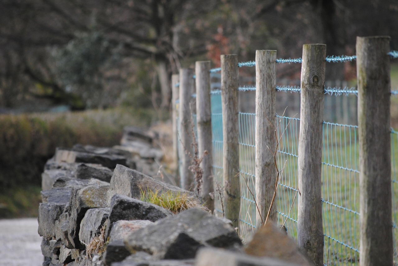 fence-652502_1280