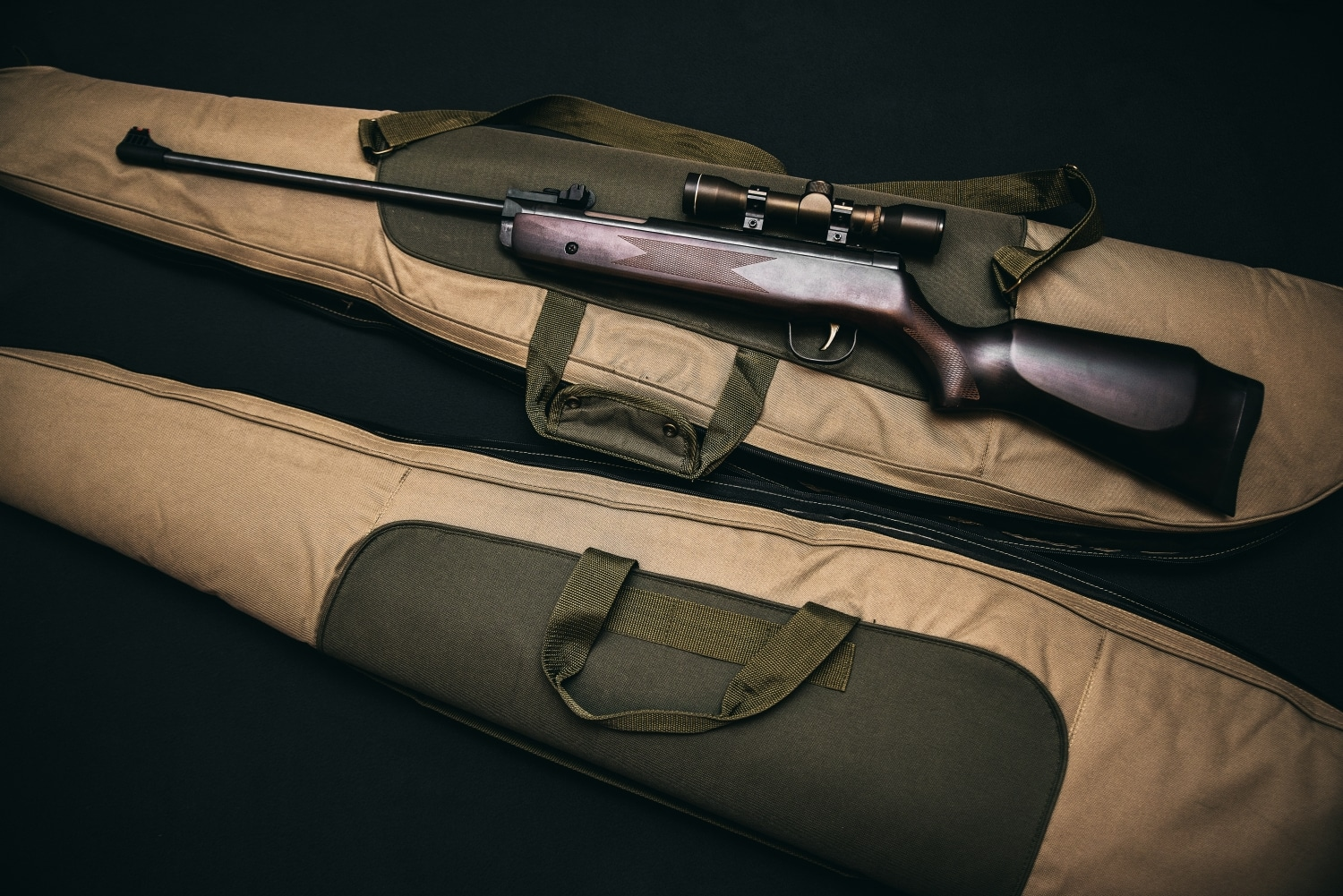 Rifle resting on top of a gun case